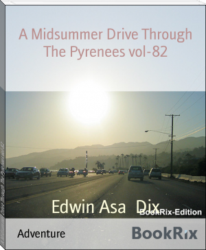 A Midsummer Drive Through The Pyrenees vol-82