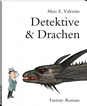 """Buchcover Marc E. Valentin - """"Detektive & Drachen"""""""