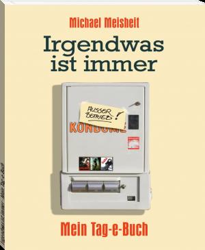 """Buchcover Michael Meisheit - """"Irgendwas ist immer - Mein Tag-e-Buch"""""""
