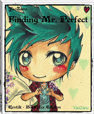 Finding Mr. Perfect